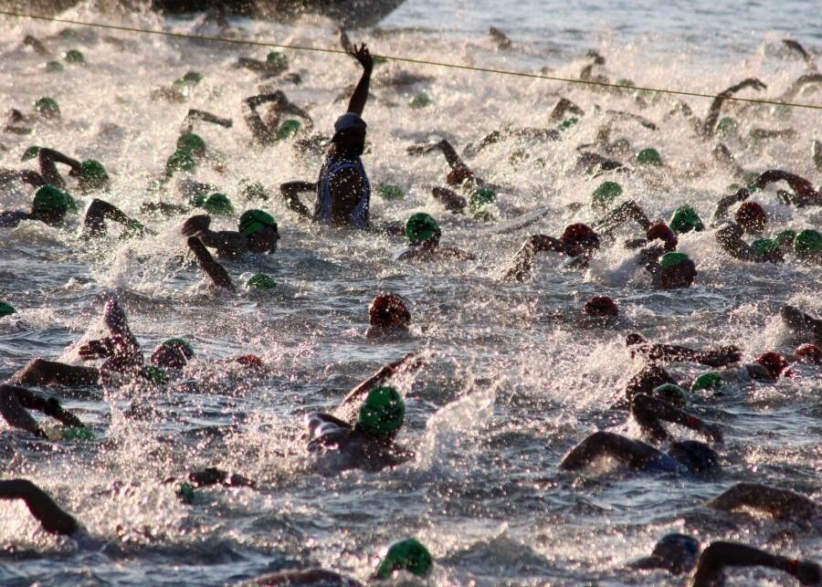 triathalon-swim-618742
